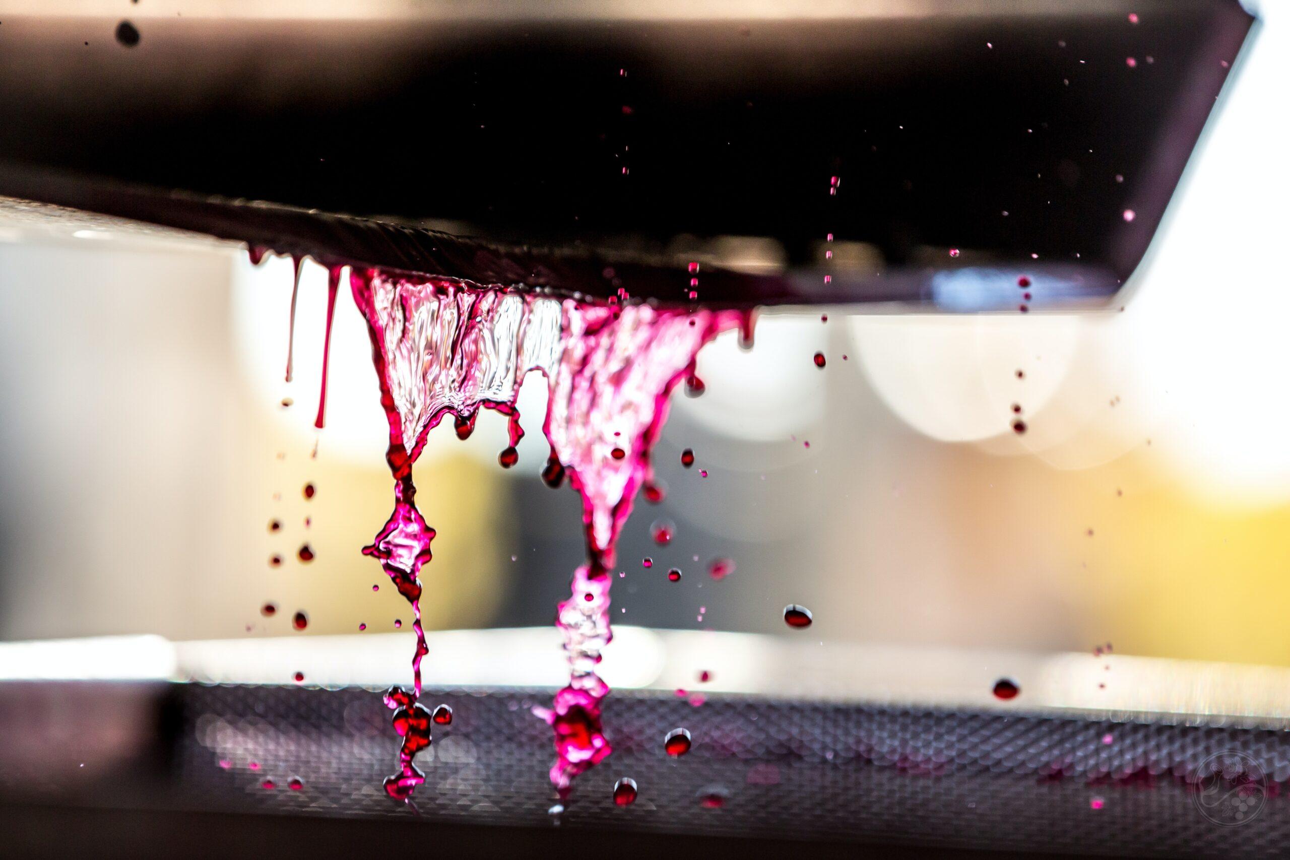 Qué es el despalillado de un vino