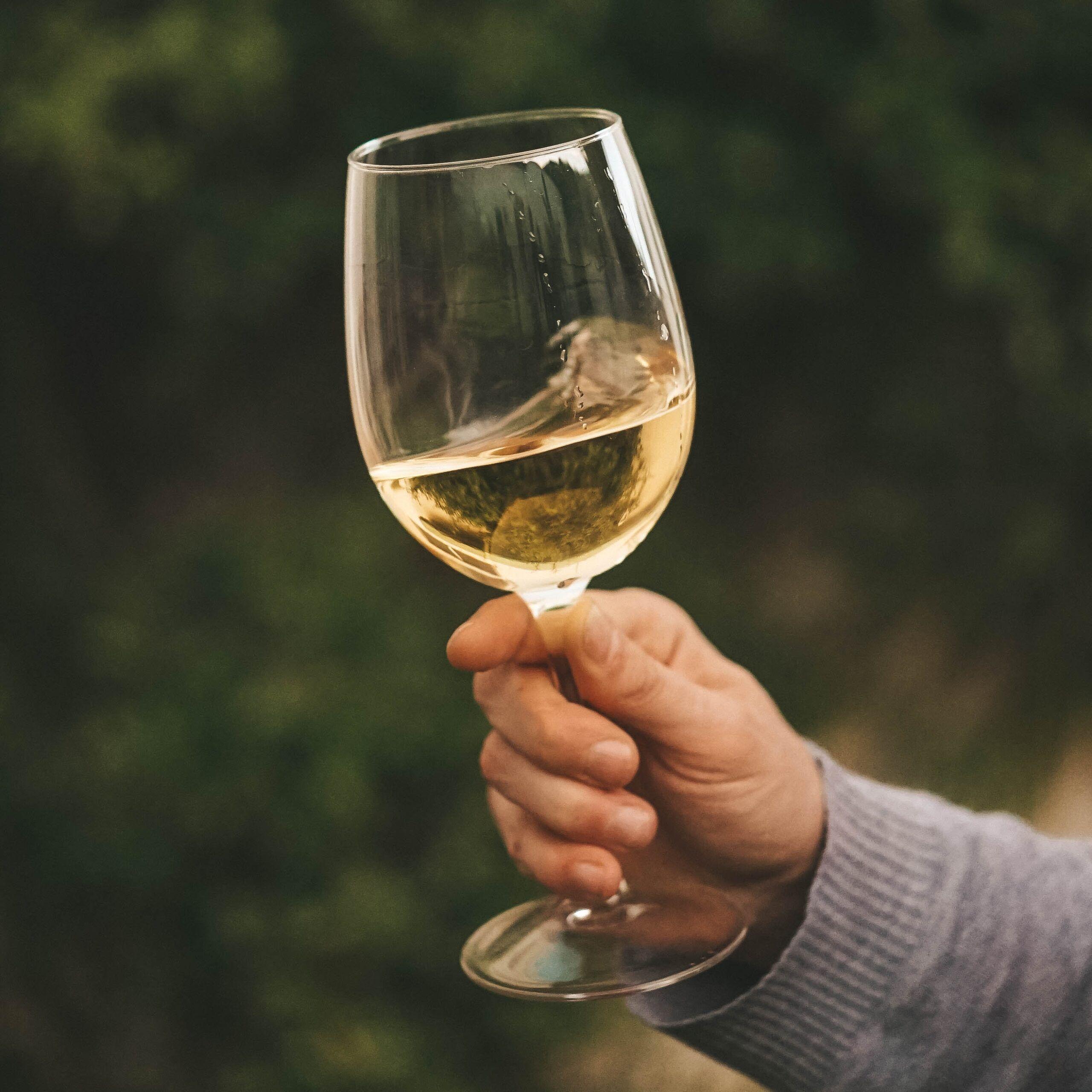 Mitos vino blanco se toma frio