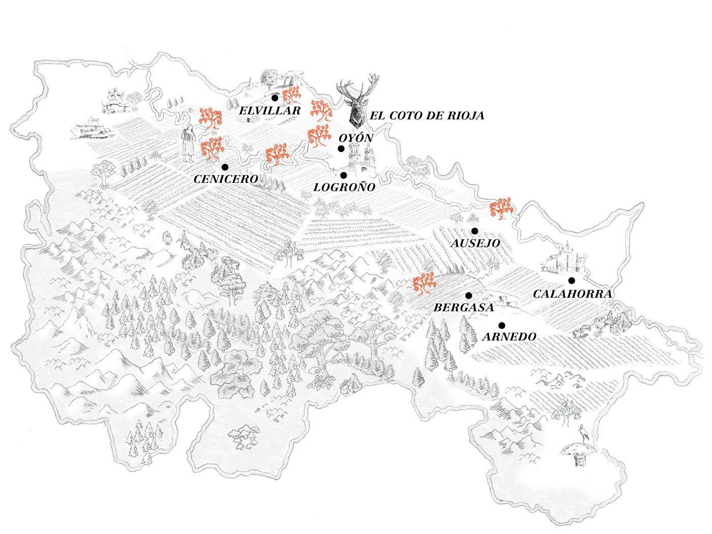 mapa viñedos y fincas El Coto