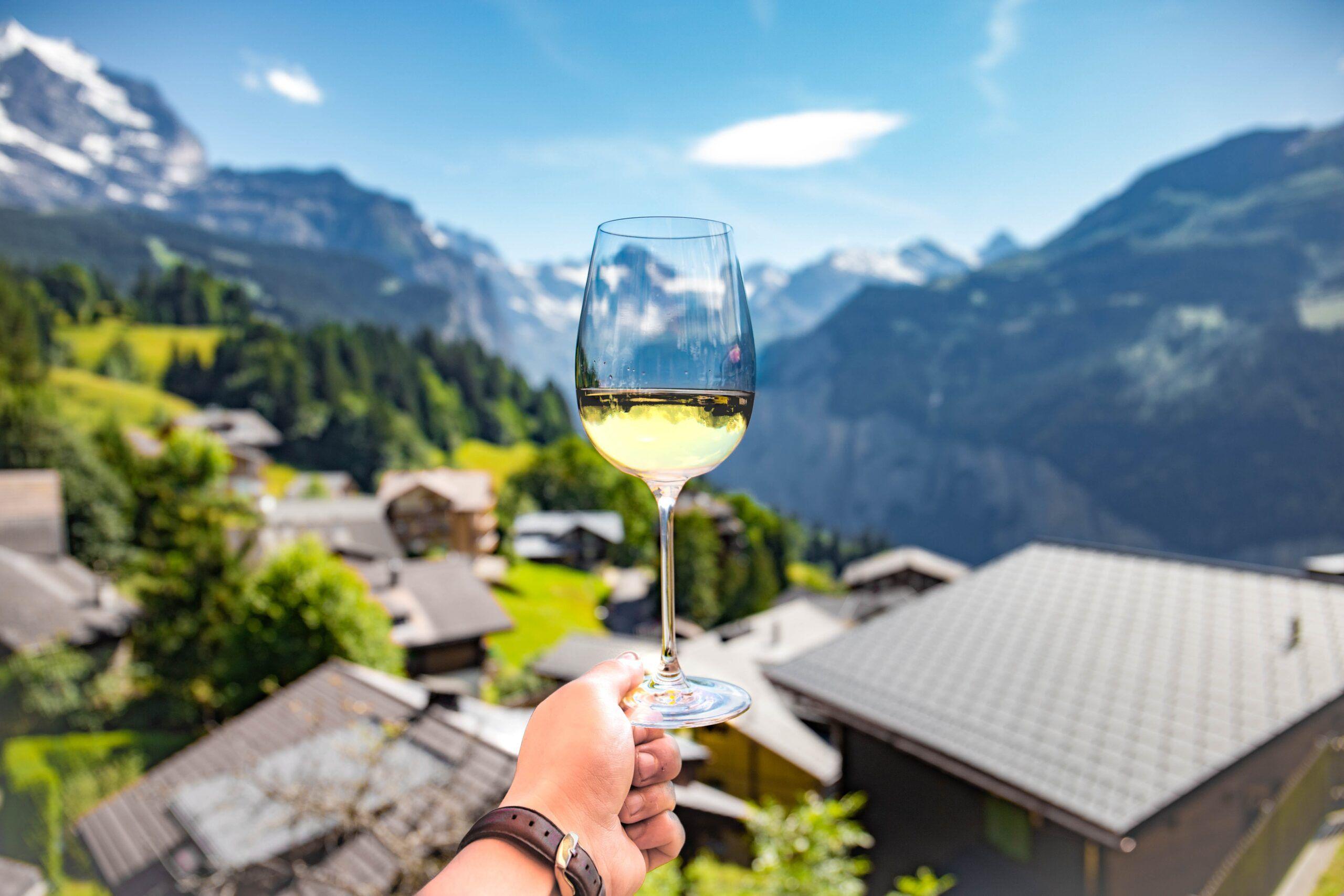 vinos para verano_montaña